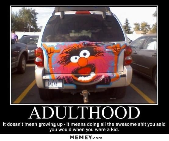 Funny car decal jpg 554x462