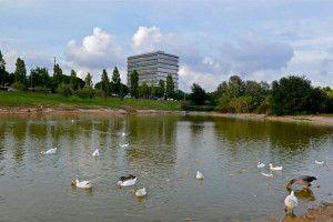 Llac Parc Empresarial