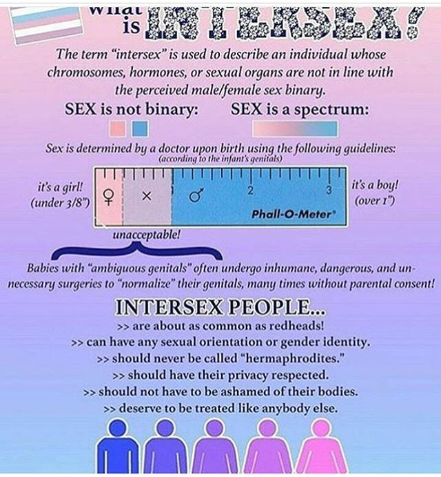 Pin On Politics Feminism Gender And Sexuality