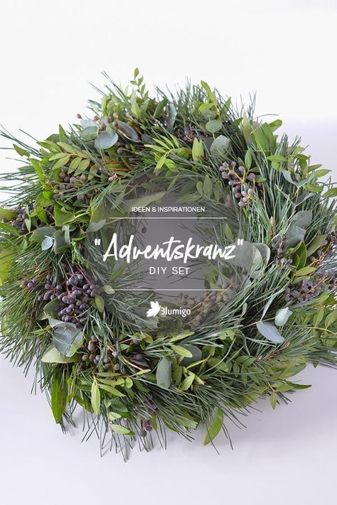 Frische Adventskränze und Tannengrün