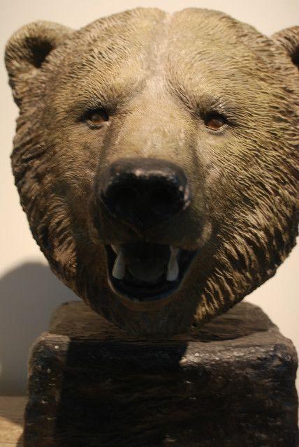 Vintage kunststof kop van een beer. Collection De Jachtkamer