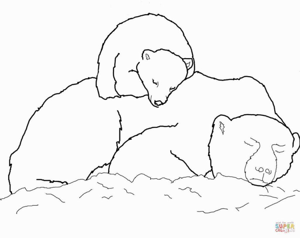 Polar Bear Coloring Sheets Panda