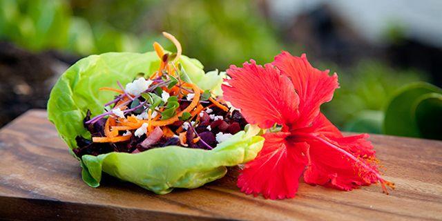 29 Terrific Taco Recipes Vegetarian Tacos Fish Tacos More Sweet Potato Tacos Hibiscus Recipe Sandwich Wraps Recipes