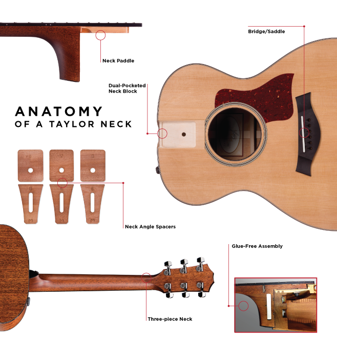 Guitar Blog The Official Taylor Guitars Blog Acoustic Guitar Luthier Guitar Taylor Guitars Acoustic