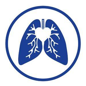 lung logo igcse mock 2012 delicate pinterest lungs logos