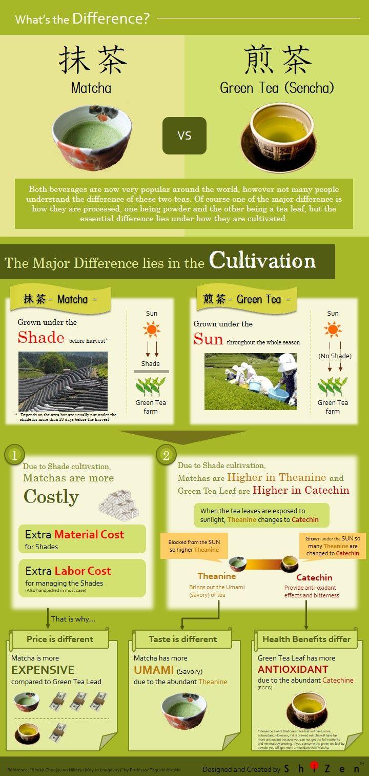 Matcha Vs Green Tea Sencha Part 1 Infographics Shizen Tea Blog Matcha Green Tea Benefits Matcha Vs Green Tea Green Tea Vs Coffee
