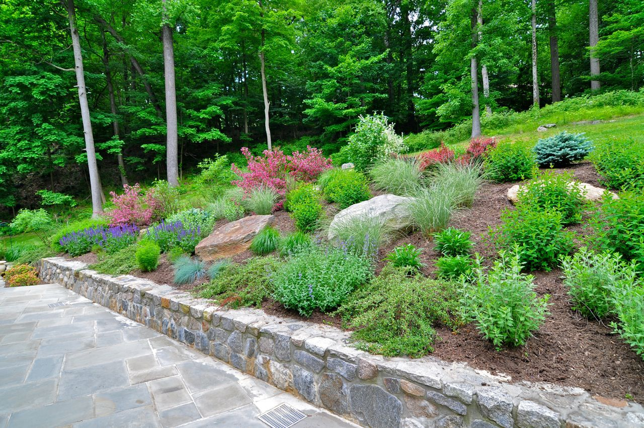 hillside landscape planting on slope with retaining wall and