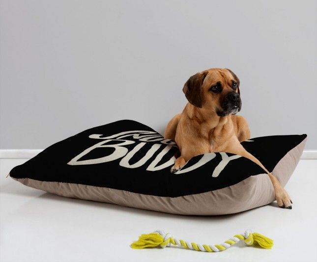 43 Holiday Dog Giftsto Spoil Woman's BFF via Brit + Co