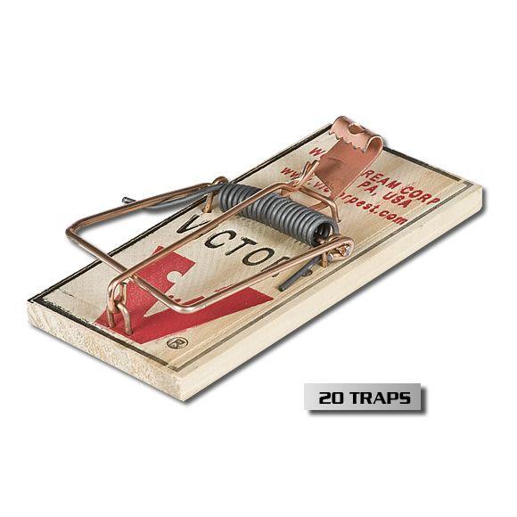Victor Metal Pedal Mouse Trap 24 Pack Trap Pedalo Amazon