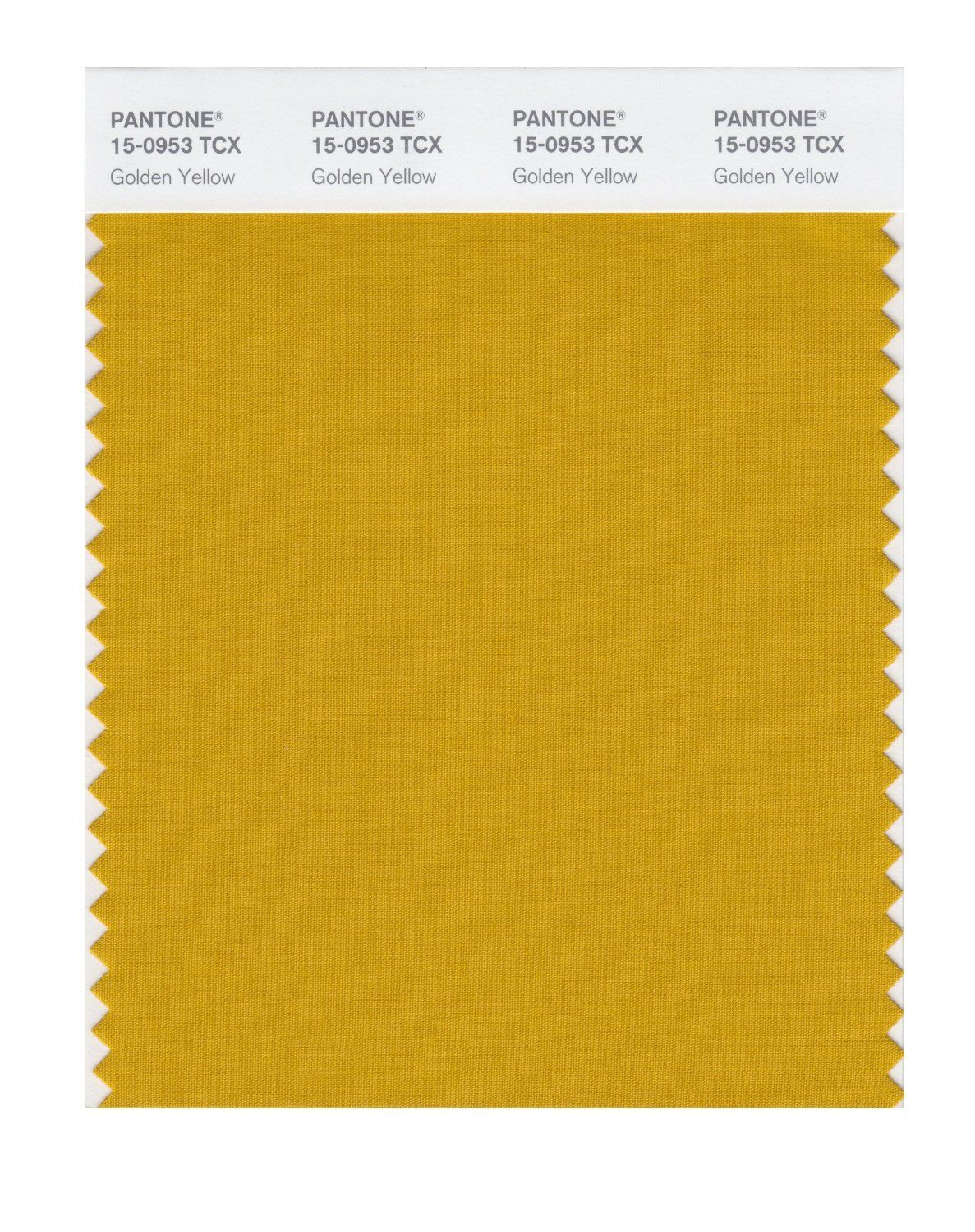 Pantone Smart 15 0953x Color Swatch Card Golden Yellow Amazon
