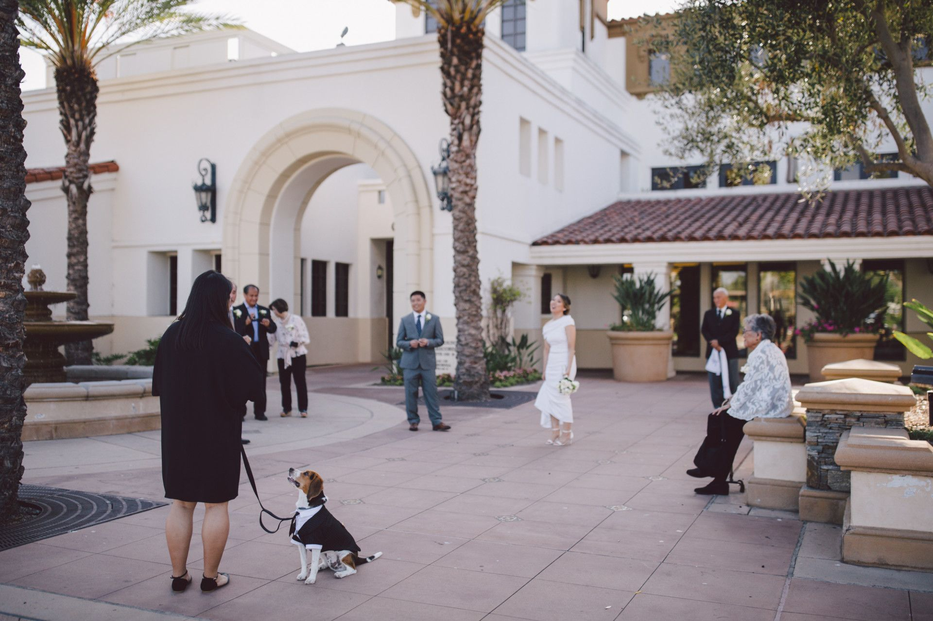 8 Reasons Why People Love Laguna Beach Courthouse Wedding
