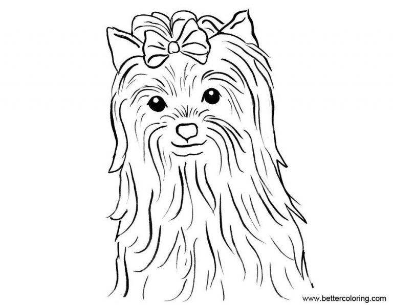 Free Yorkie Puppy Coloring Pages Yorkie Puppy Coloring Pages Free Printable Coloring Pages Free Yorkie Co Puppy Coloring Pages Dog Coloring Page Coloring Pages