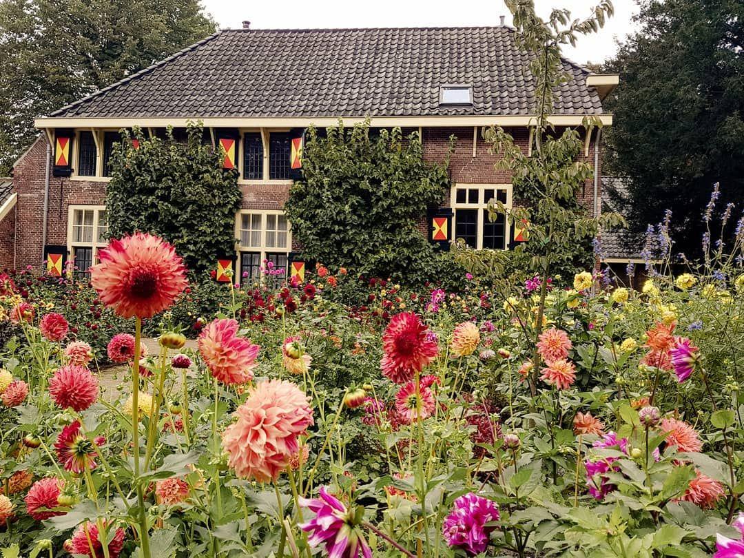 Guten Morgen Eine Blumige Woche Wunsch Ich Euch Fraeuleinbluetenstaub Dahlien Lastsummer Holland Keukenhof Dahlienliebe Garde House Styles Cabin House