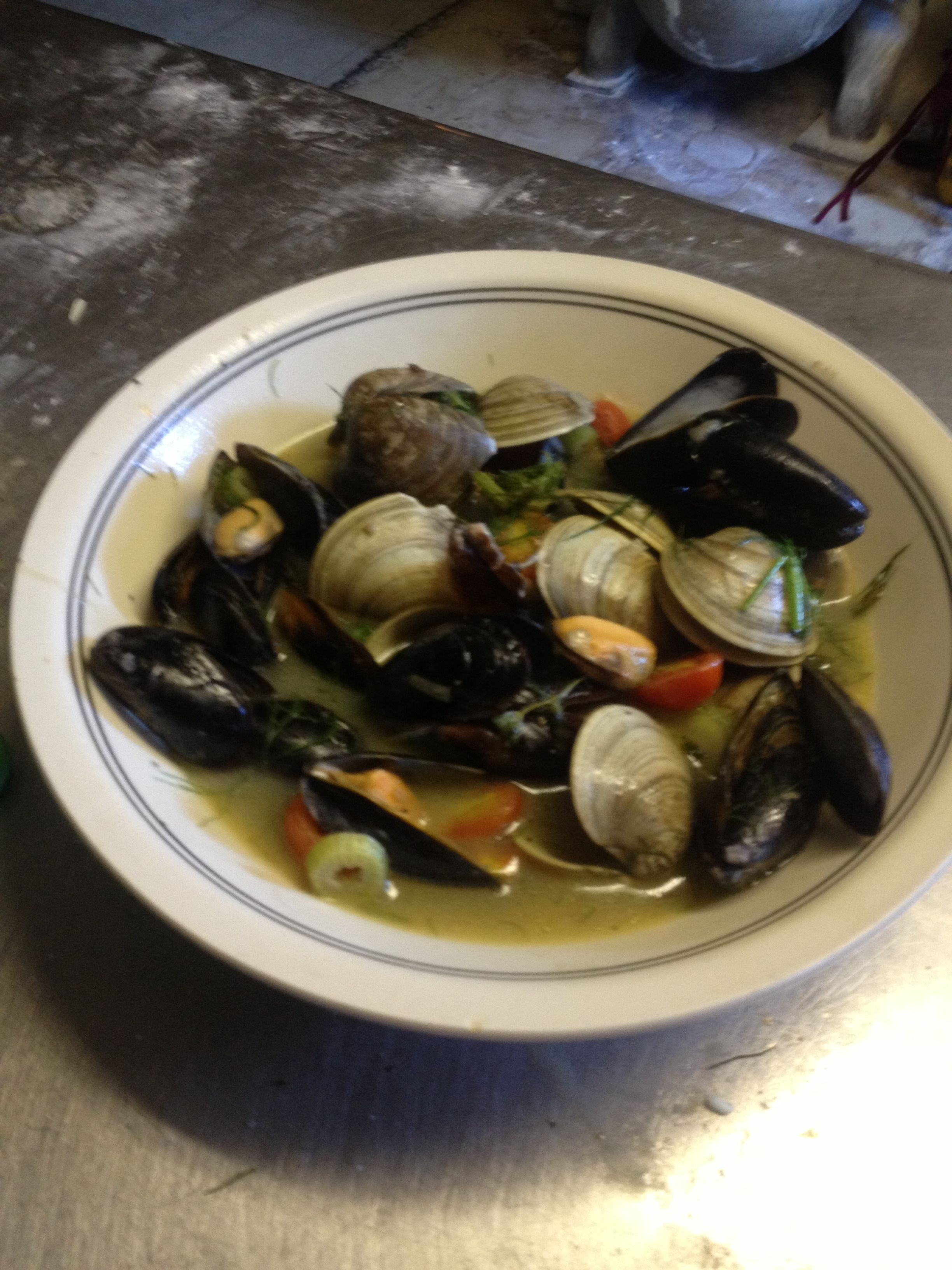 Clams mussels with fennel grape tomatoes grape