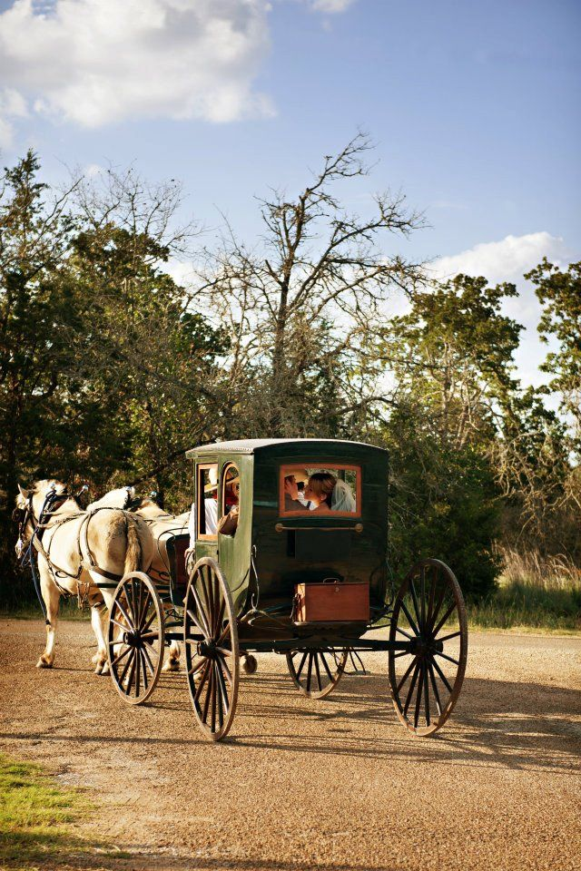 Best Travel Buggy Ireland Horse Carriage Preferably In Nature Or In Quaint Little