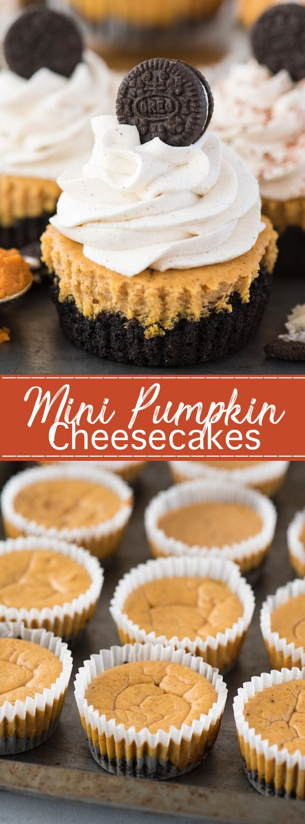 Mini Pumpkin Cheesecakes | The First Year