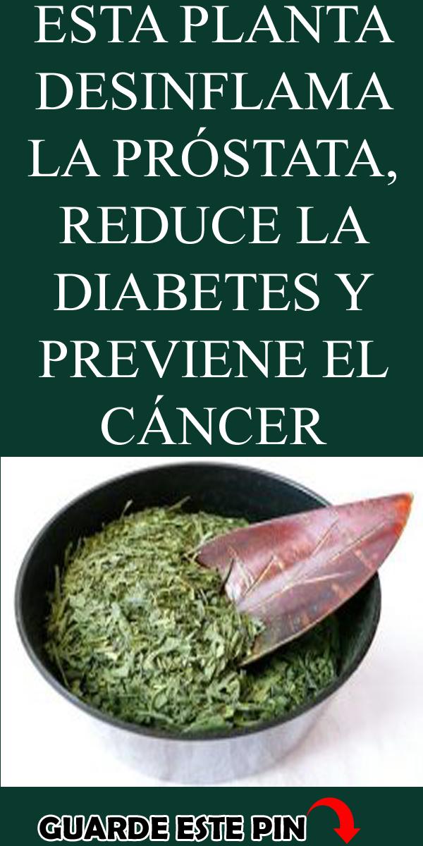 el remedio halki para la diabetes pdf gratis
