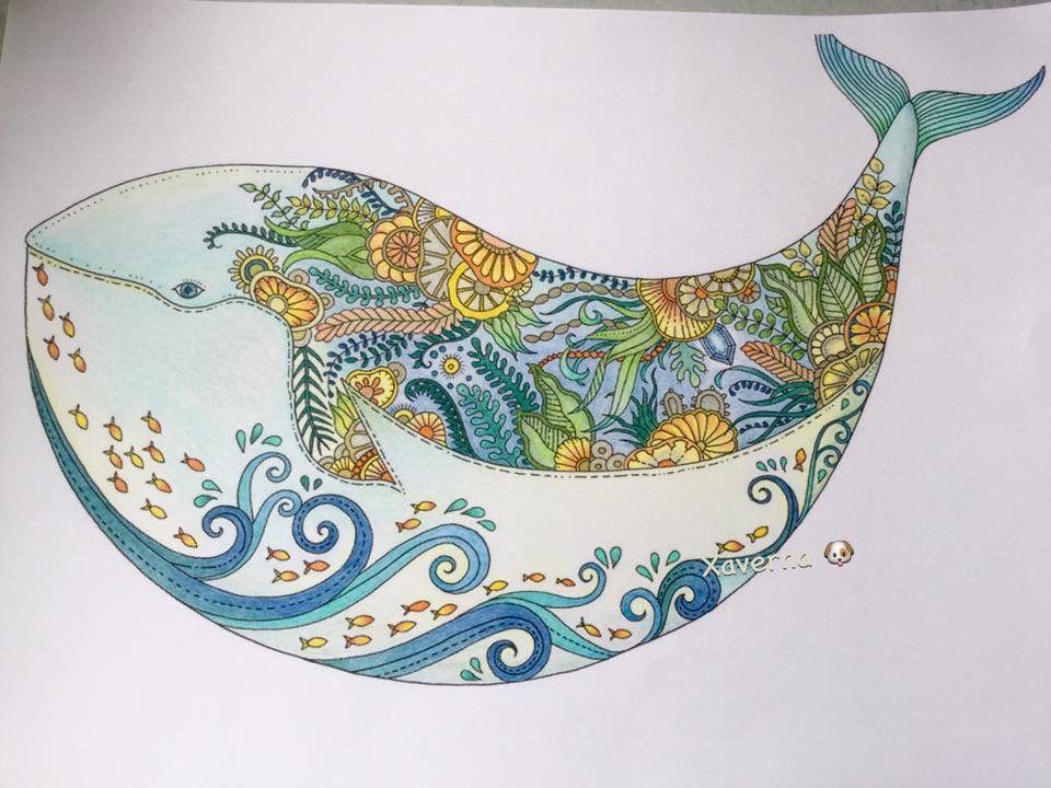 Pin de Andrea Borchert en Coloring - Johanna Basford | Pinterest
