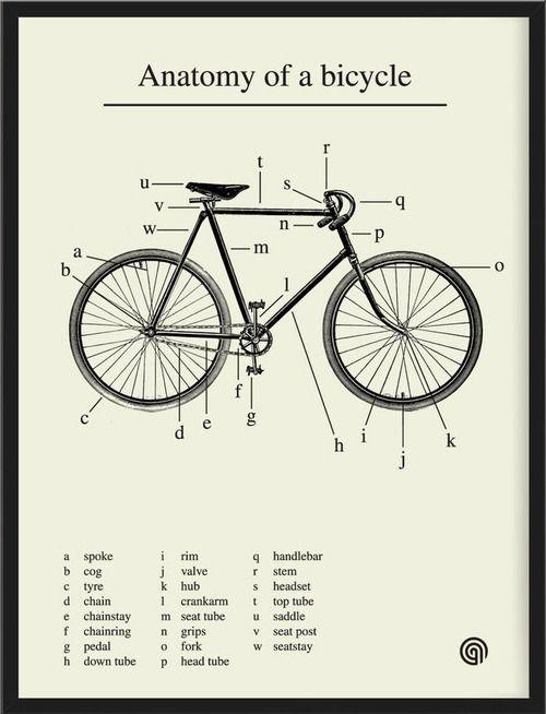 Anatomía en dos ruedas (I LAB YOU) | Cycling | Pinterest | Vintage ...