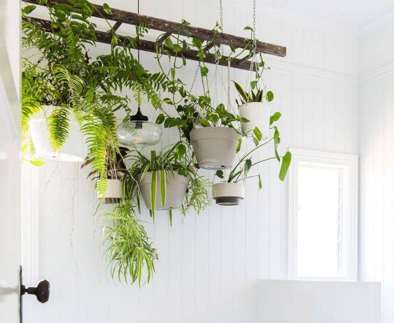 Bathroom Farmhouse Ladder Pot Rack, Rustic Pot and