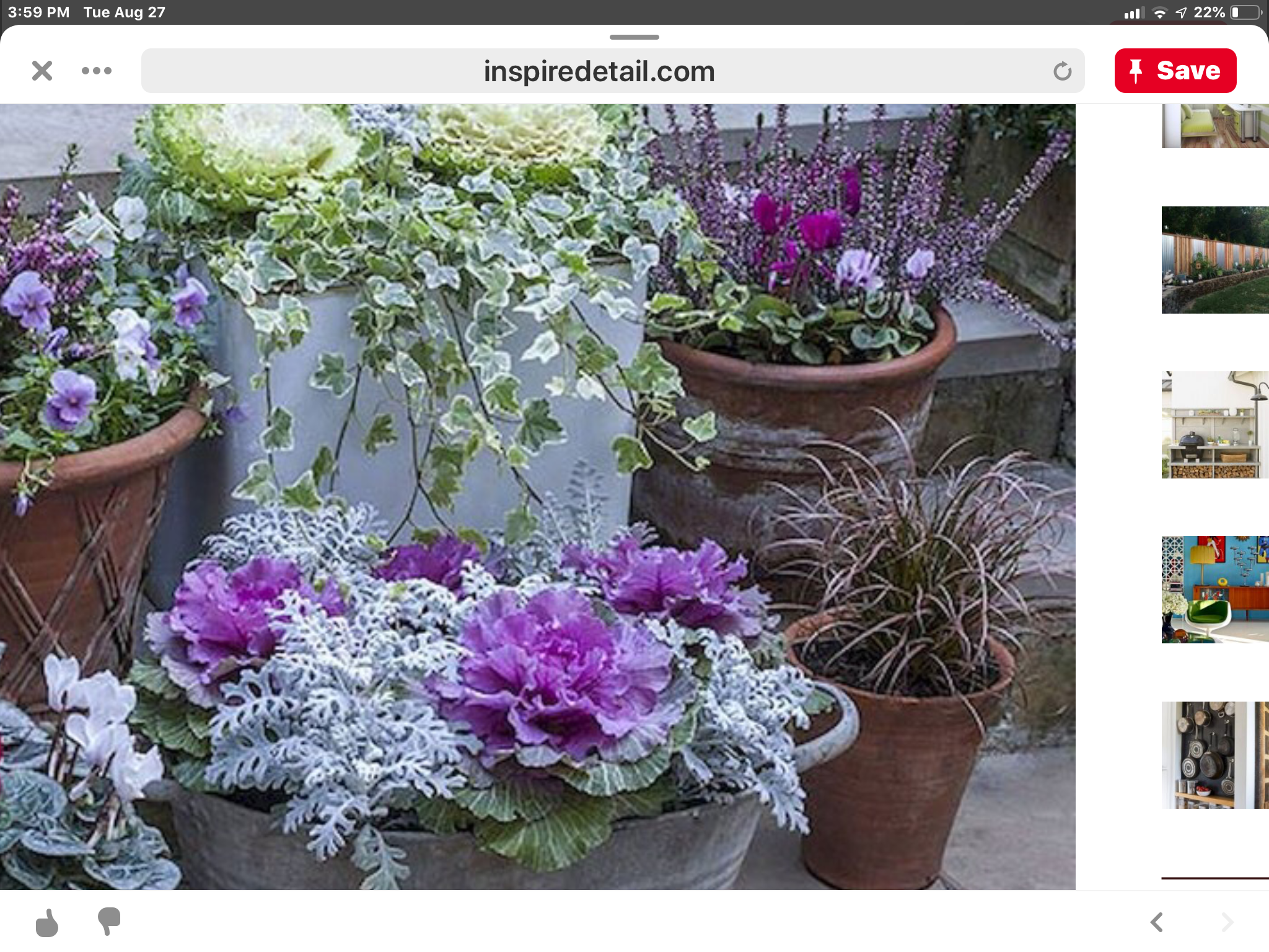 Pin by kathi stucke on Pots Fall container gardens