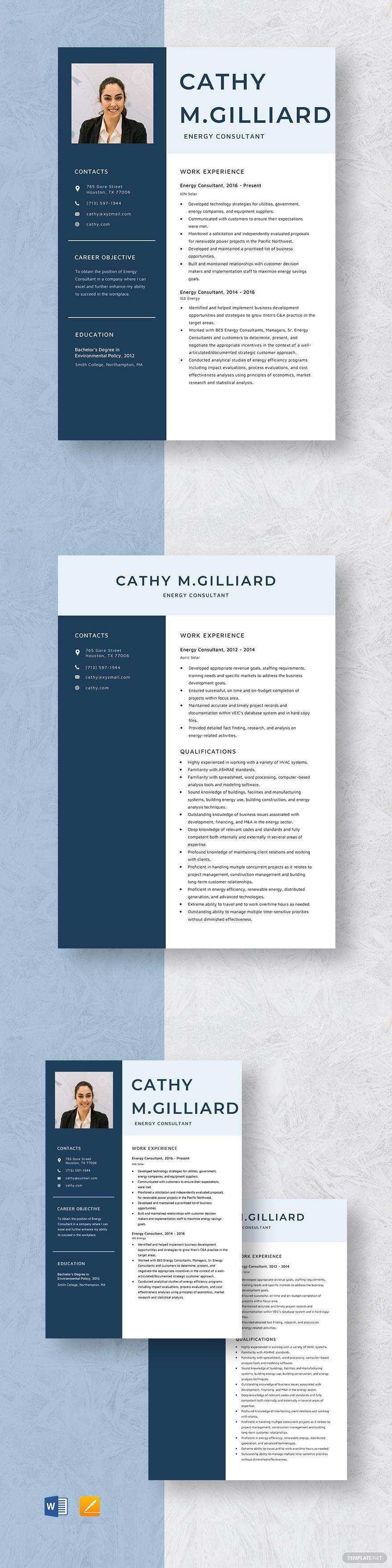 Energy consultant resume template in 2020 educator