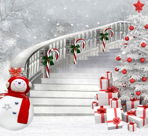 Winter Photography Background Snowman Backdrops Long Stair ...
