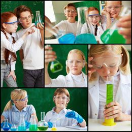 Simple and Easy 7th Grade Project Ideas for Your Science ...