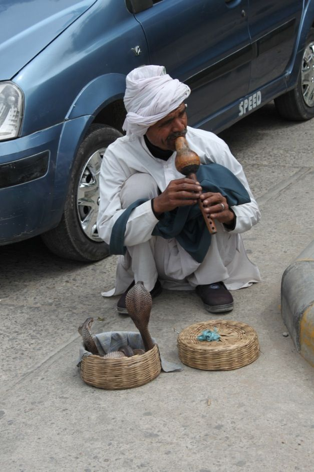 encantador de serpente Deli India