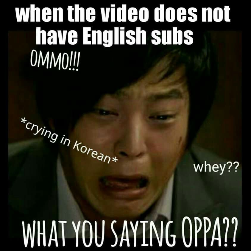 Yes And I Only Know A Little Bit Of Korean I M Still Learning Kdrama Funny Drama Memes Funny Kpop Memes