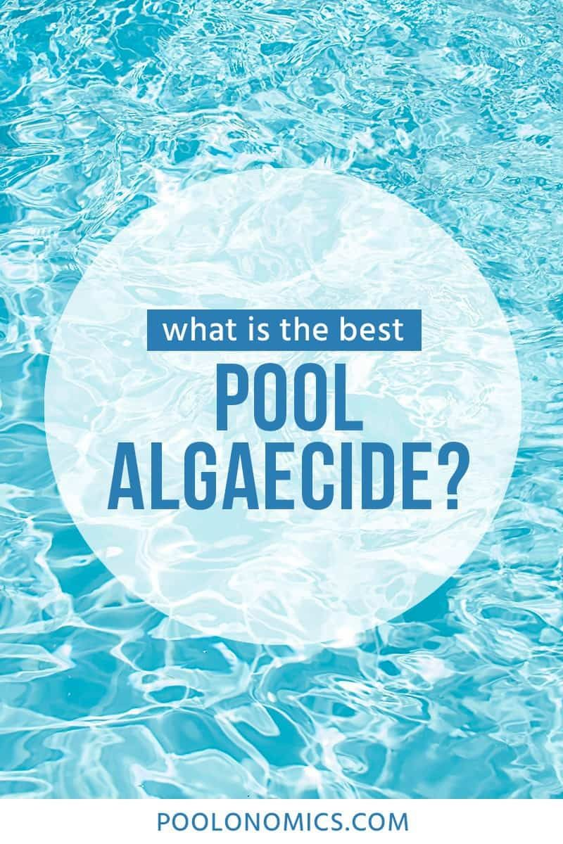 Best Pool Algaecide A Review Buying Guide For 2019 Cool Pools Cool Swimming Pools Pool Picture