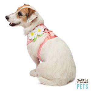 Martha Stewart Pets Gingham Daisy Dress Harness Harnesses Petsmart Cute Dog Harness Martha Stewart Pets Dog Trends