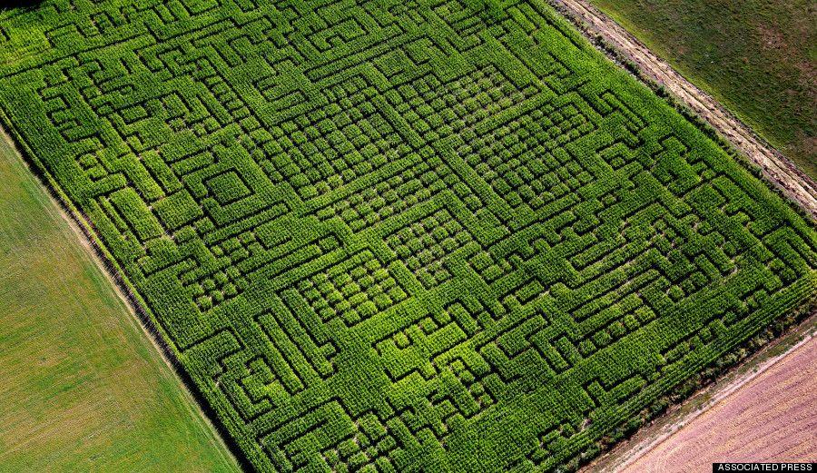 bc4aadfbfb00ce7f4ee16b93acb6aa23 - Denver Botanic Gardens Corn Maze Hours