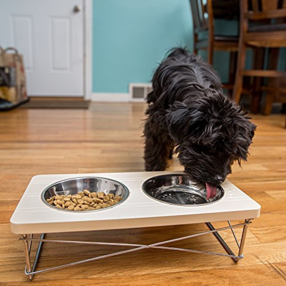Elevated Dog Feeder Cat Double Bowl Tray Stainless Steel Raised