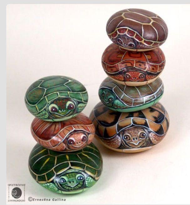 Many turtles