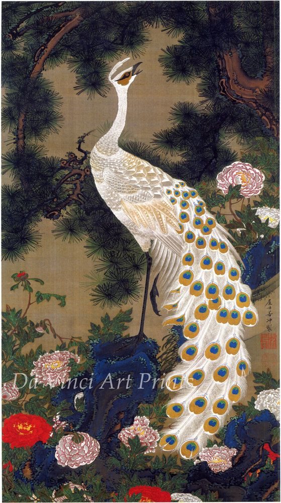 Japanese Art. Fine Art Reproduction. Peacock and P
