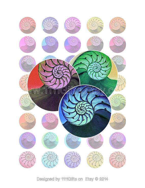 1 Inch Circle Fibonacci Sequence Images Digital Collage Sheet For