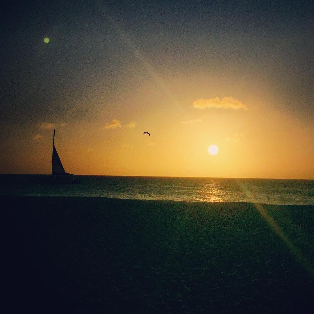 #aruba #sunset #pelican #sailboat by mycroftergo