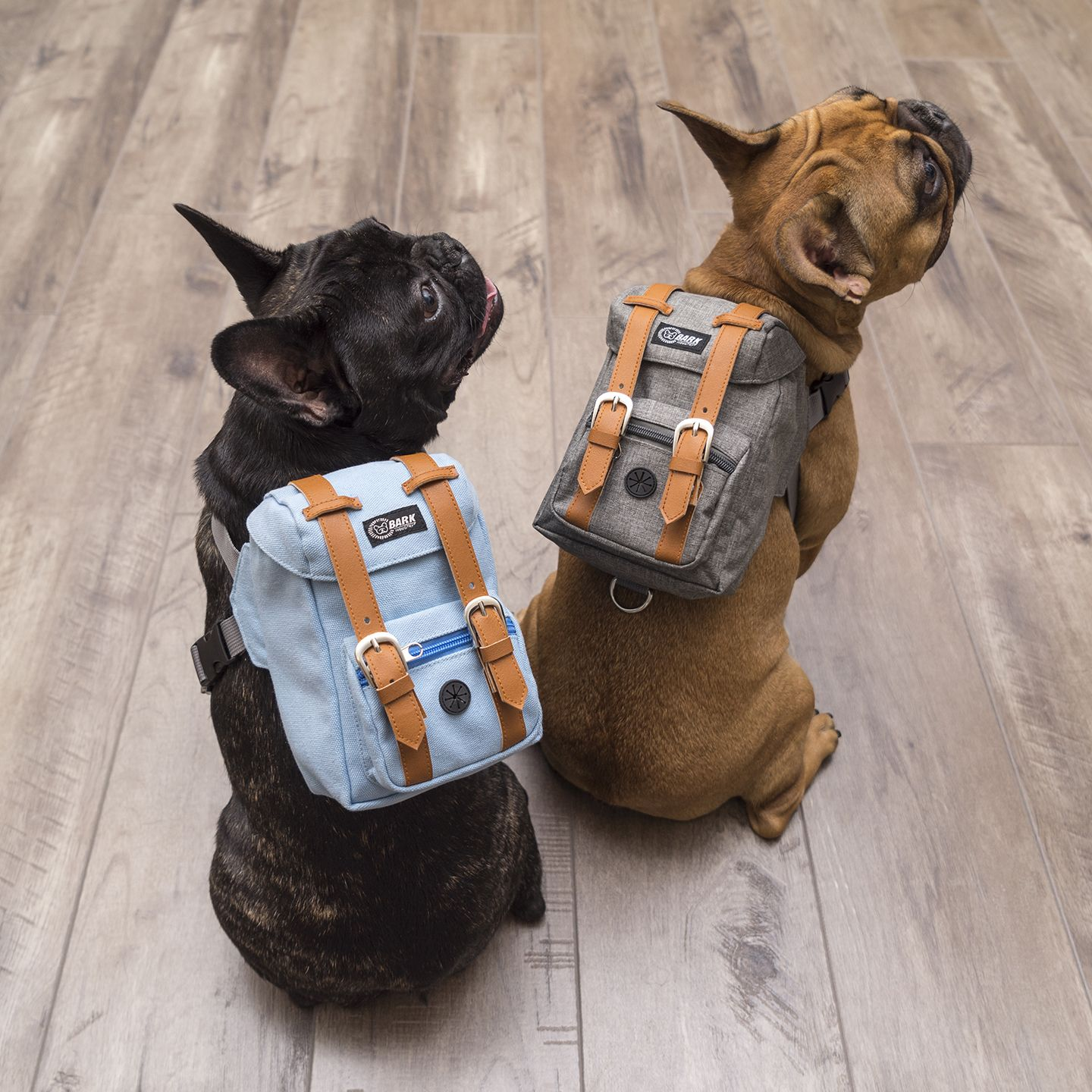 Pin On Bark Industry Dapper Series Doggy Backpack