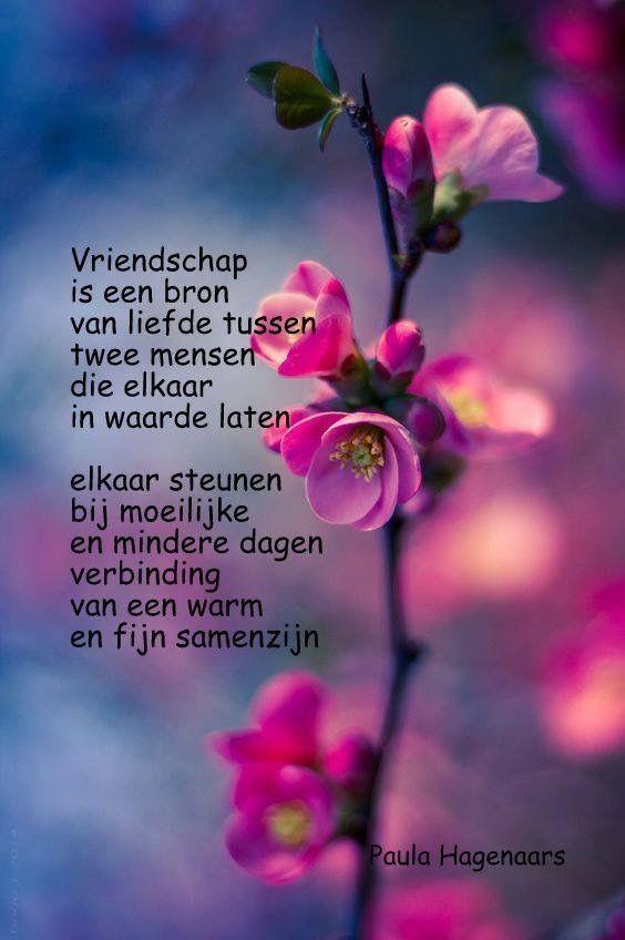 Citaten Over Vrienden : Pin van wil overman op friends pinterest friendship