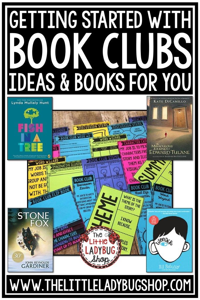 Photo of Books Clubs in your Upper Elementary Classroom – The Little Ladybug Shop