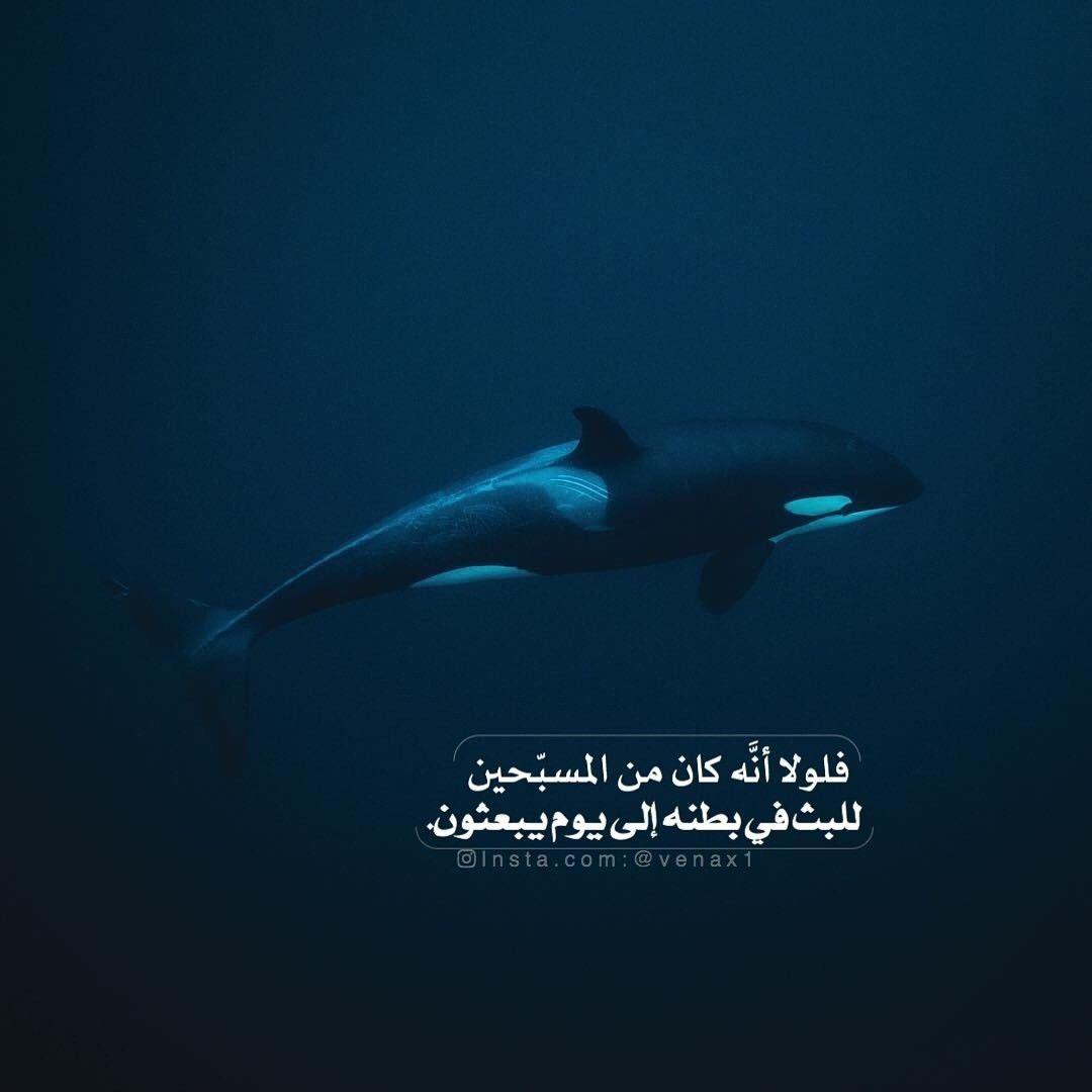 سبحان الله وبحمده سبحان الله العظيم سبحانك ربي لا إله إلا انت Arabic Quotes Quotes Allah