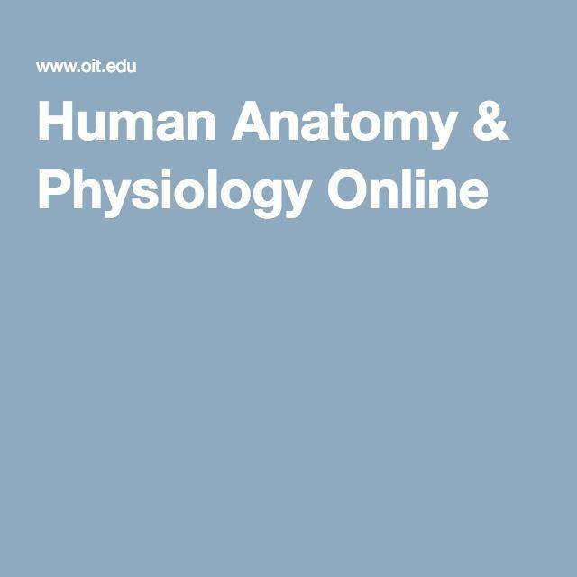Human Anatomy & Physiology Online | Nursing | Pinterest | Human ...