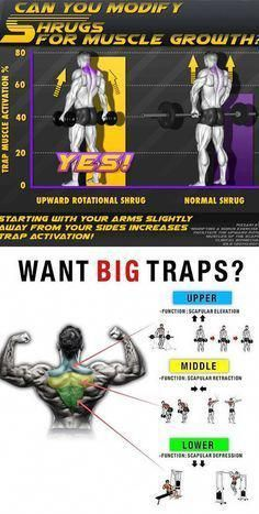 Shrugs for Muscle Growth  Shrugs for Muscle Growth #musclegrowth