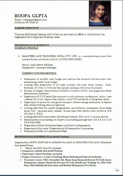 Download A Resume Sample Template Example Ofexcellent Curriculum