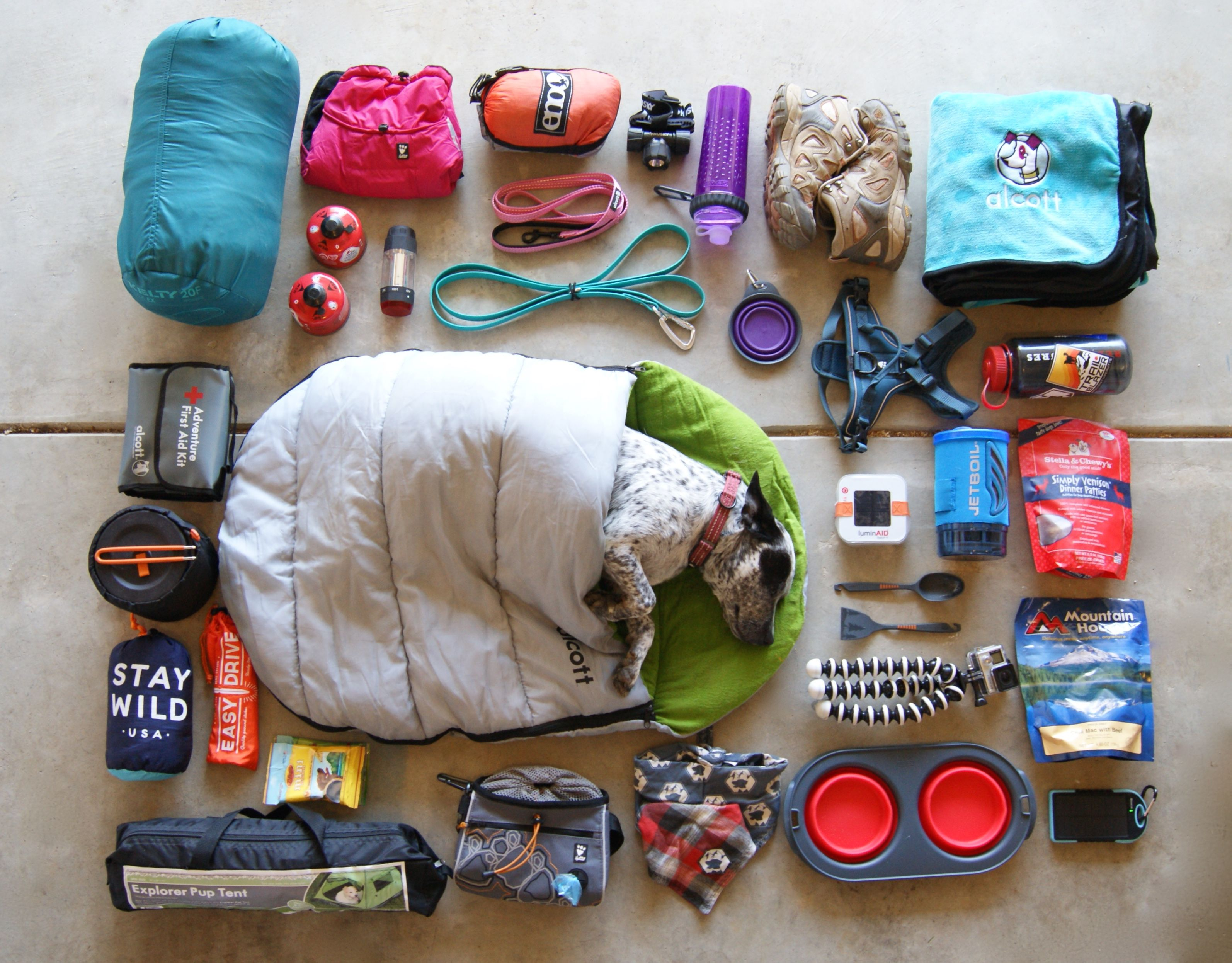 Some of our favorite camping gear! flatlay gearshot