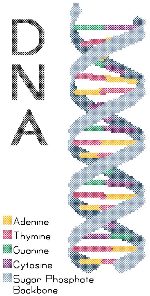 DNA Molecule by ~rhaben on deviantART