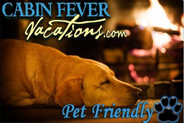 Select Pet Friendly Cabin Rentals From Cabin Fever Vacations Many Pigeon Forge Gatlinbu Pet Friendly Vacations Pet Friendly Cabins Big Family Travel
