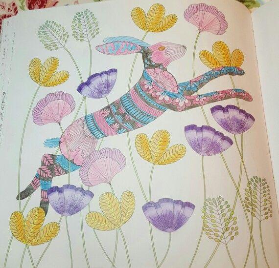 Millie Marotta Animal Kingdom Leaping Hare