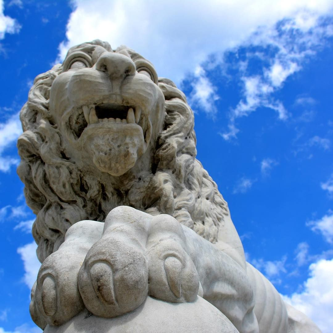 st augustine florida did you know these lions have names firm st augustine florida hotels on the beach